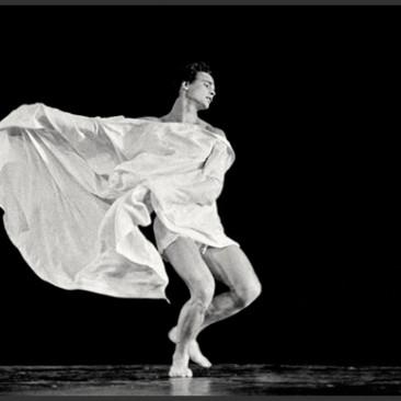 La Danza – 1984 | 1986